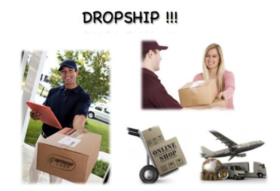 bisnis dropshipper